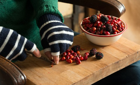 male-gansey-gloves-berries-closeup-l